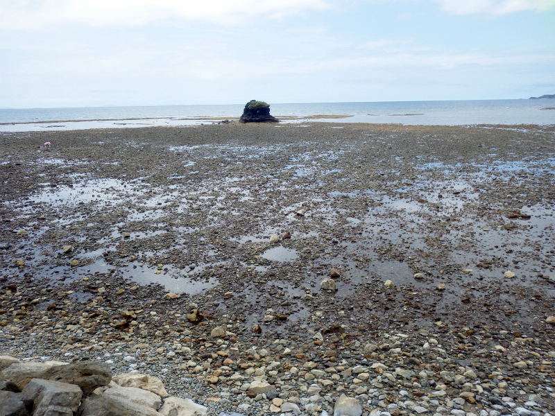 辺土名高校にて、海の環境につい...